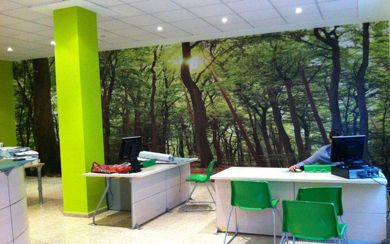 vinilo mural despacho alicante pikabu